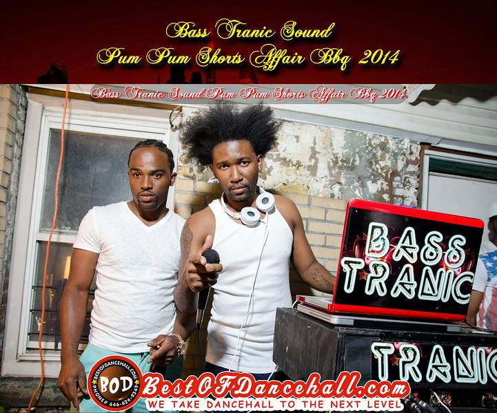 7-18-2014-BRONX-Bass Tranic Sound Pum Pum Shorts Affair BBQ 2014