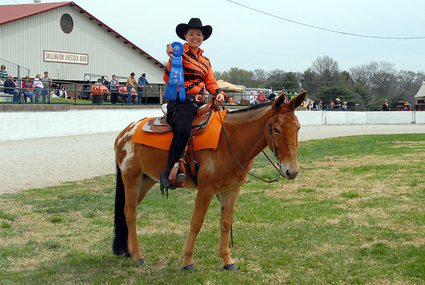 2014 Riding Mule