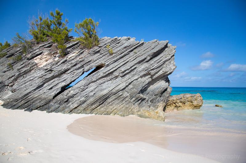 1705-Bermuda-1110.jpg