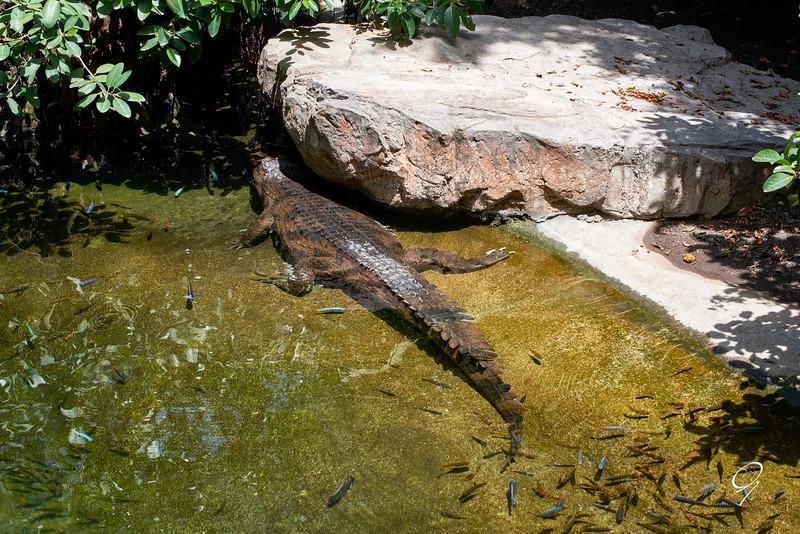 Biopark 300616W-97.jpg