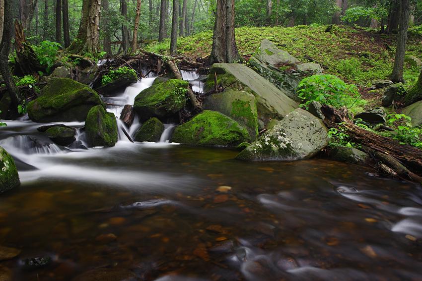 IMAGE: http://www.christophergmoy.com/Landscapes/Bushkill-Falls-PA/i-5KJzw3c/0/X3/WH2K2951-X3.jpg