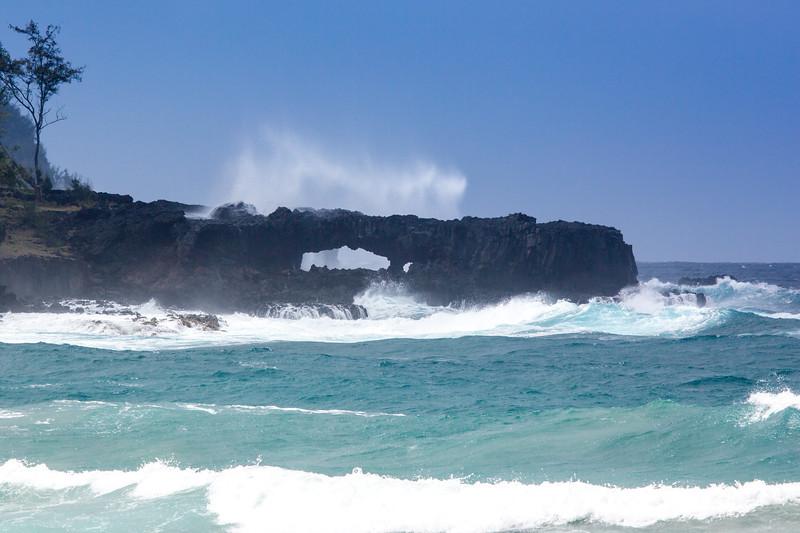 Hawaii - 061812 - 409.jpg
