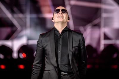 Pitbull - ACC
