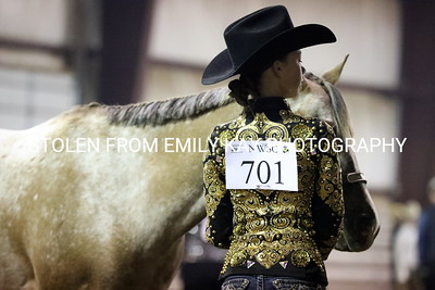 10-12 Northwest Saddle Club Pleasure Show