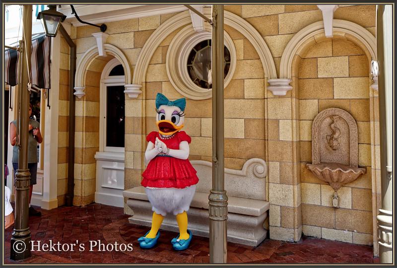 Disneyland Leica Q-4.jpg