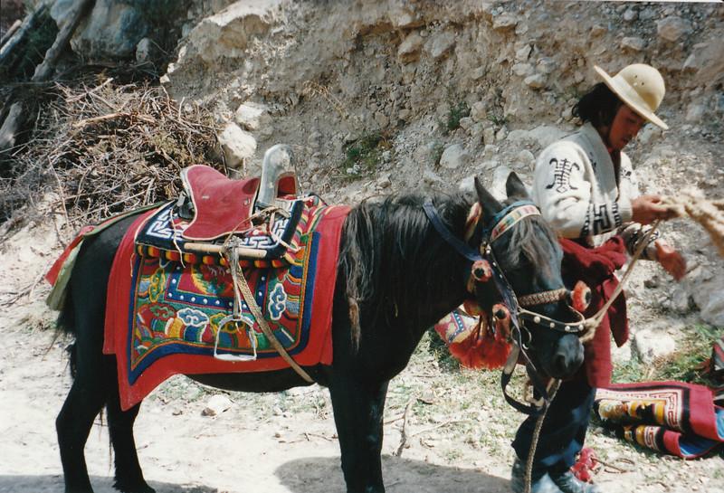 tibet_0056.jpg