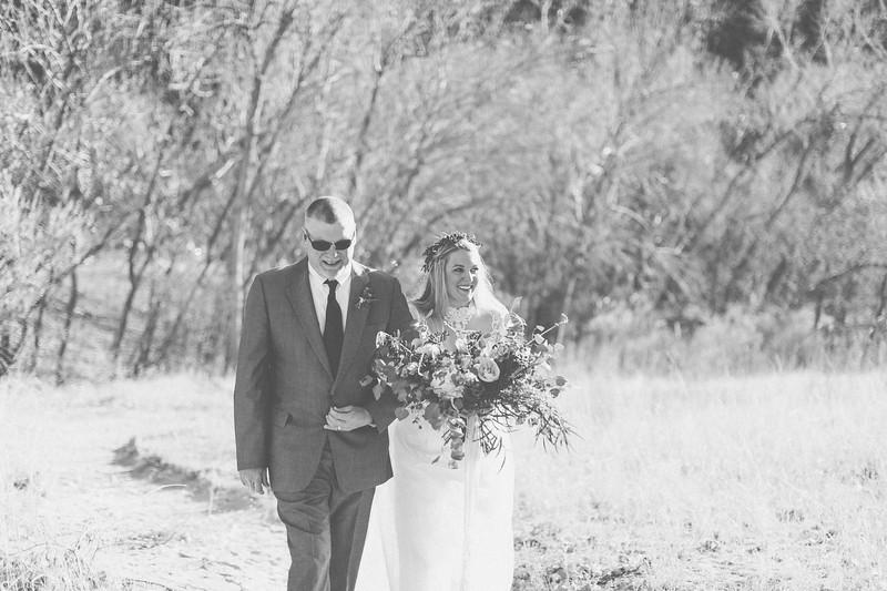 L+D Wedding-19.jpg