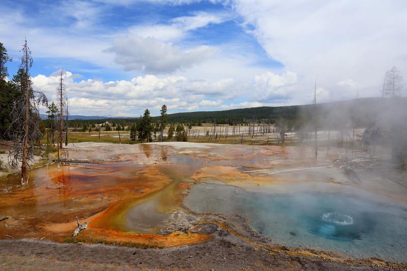 Yellowstone 094.JPG