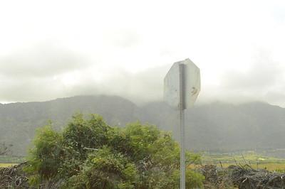 Maui - 2016