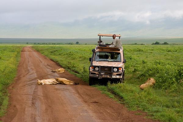 2007 Tanzanie