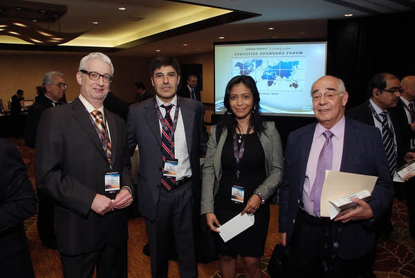 Executive Sponsors Forum Spring 2013