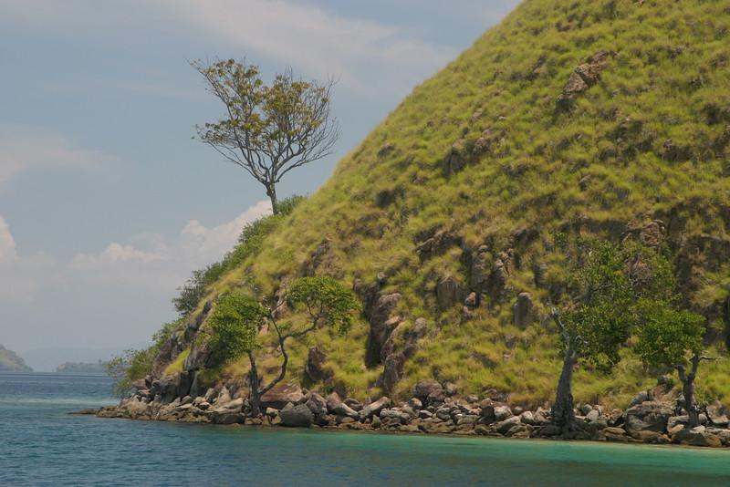 IN264-Komodo seashore.JPG