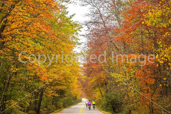 Biking in Fall -  (in progress)