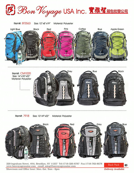 BackPack p85-X2.jpg