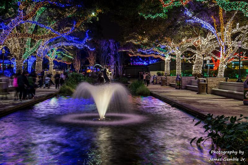 Houston-Zoo-Lights-2949.jpg