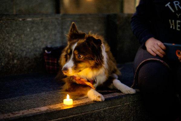 Candles for Yulin