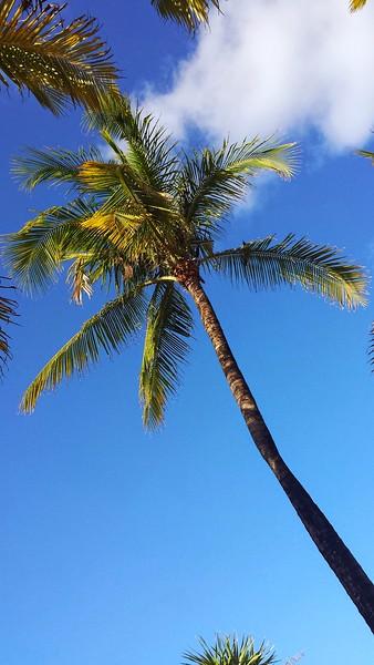 2015 Cancun Trip