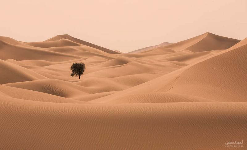 Oman Desert (32).jpg