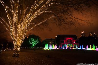 Garden Lights 2013