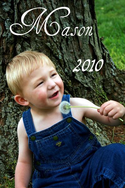 Mason 2010