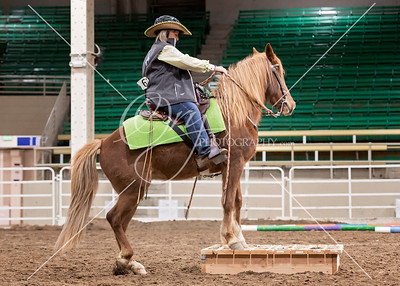 COCS Rocky Mountain Horse Expo- 3.1.20