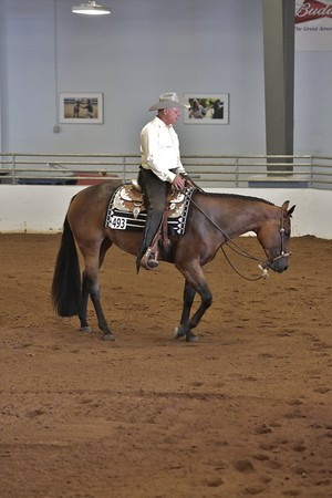 Pleasure/Horsemanship Classes