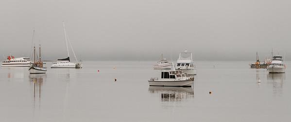 NZ mist
