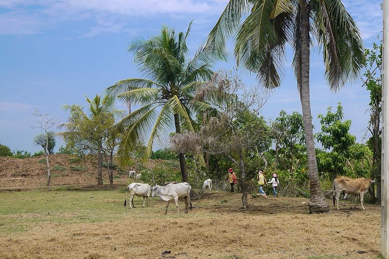 Battambang-Cambodia-42.jpg