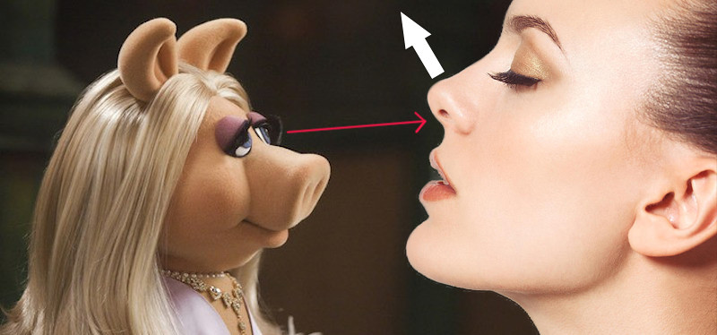 Piggy.jpg