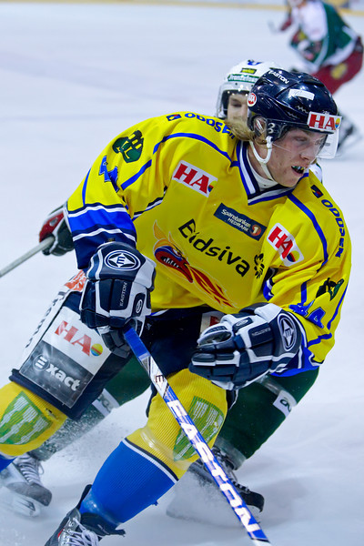 Storhamar Dragons 2009-2010