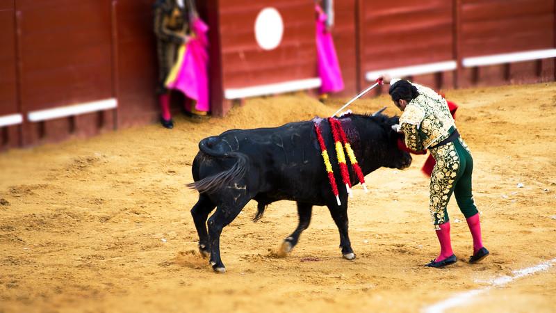 Bullfight11.jpg