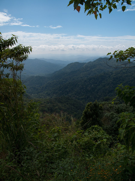Valley leading to Oaxaca
