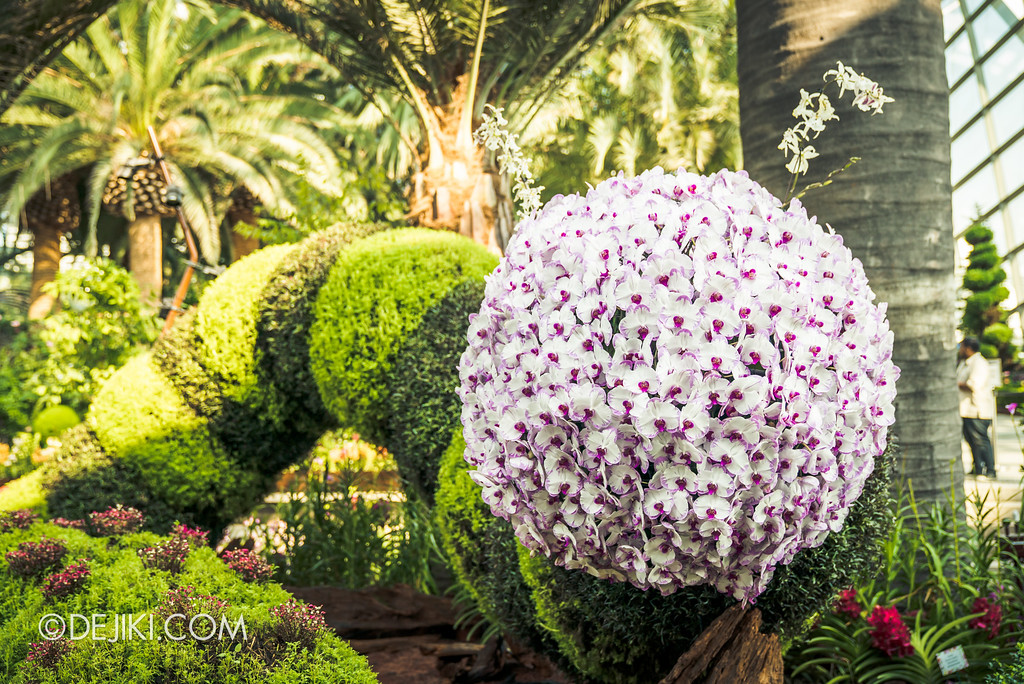 Gardens by the Bay Flower Dome - Orchid Extravaganza Floral Display 2017 / Caterpillar giants