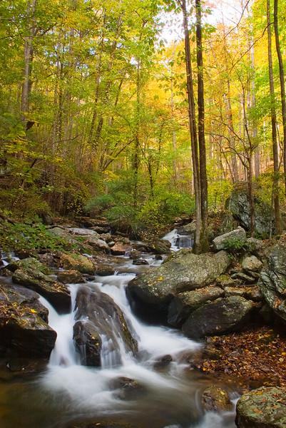 Smith Creek below Anna Ruby Falls
