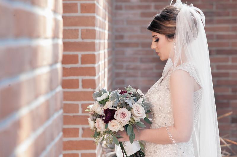 Houston Wedding Photography ~ Brianna and Daniel-1199-3.jpg