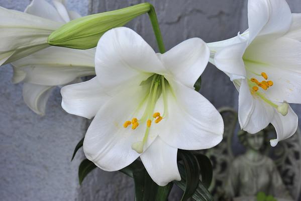 OLA 1st Communion April 18,2010