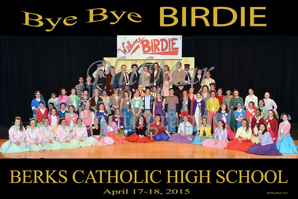 Berks Catholic Plays 2014 - 2015