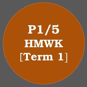 P1/5 HMWK T1