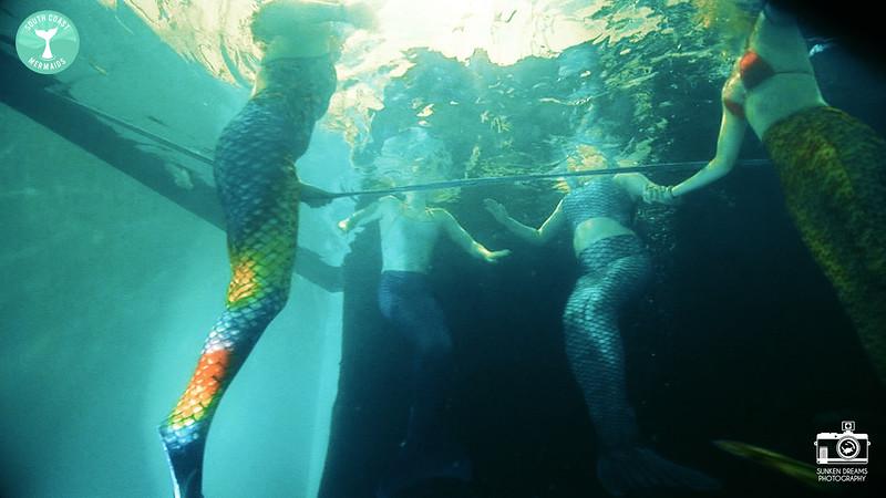 Mermaid Re Sequence.01_25_17_01.Still025.jpg