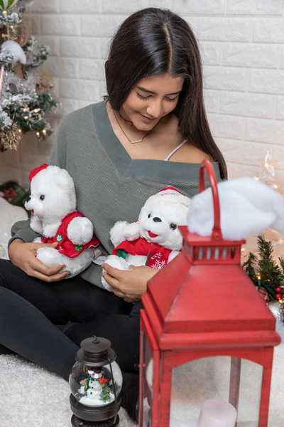 12.18.19 - Vanessa's Christmas Photo Session 2019 - 42.jpg