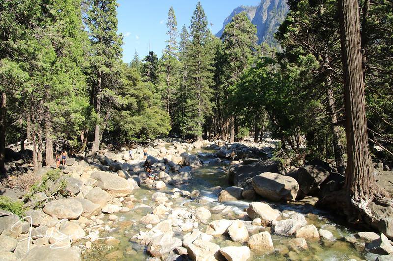 Yosemite 2018 -78.jpg