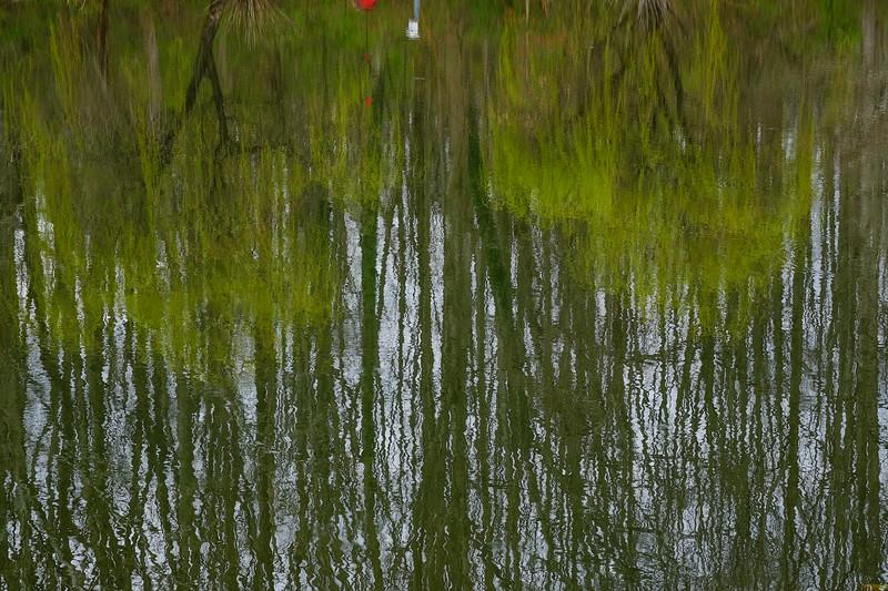 meadowlarkgardens-10.jpg