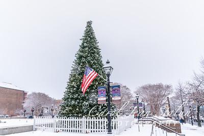 Alexandria Snow Day 2021