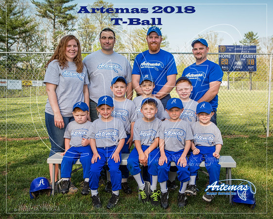 Artemas Teams 2018