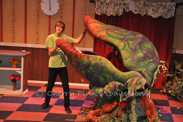 Little Shop Of Horrors - Photo Day