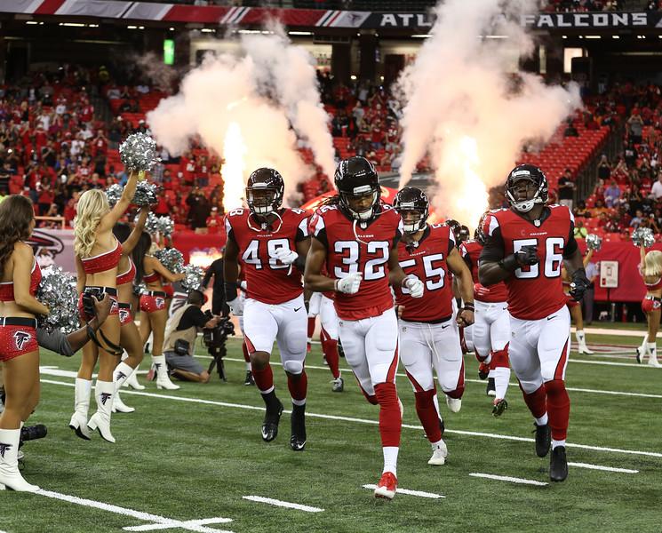 Falcons--2.jpg