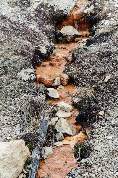 20130511-12 Yellowstone 083.jpg