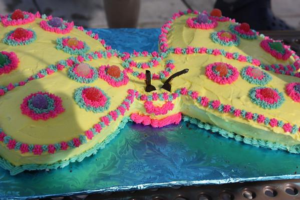 Amelia's Sixth Birthday Party