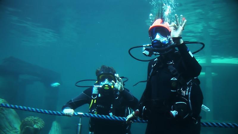Underwater Walk Edit 45secs.00_00_08_01.Still012.jpg