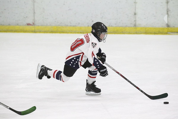 06 Silver - Allegheny Badgers